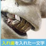 入れ歯をしたロバ2