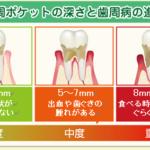 歯周ポケット2